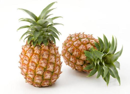 輸入商材 パイナップル